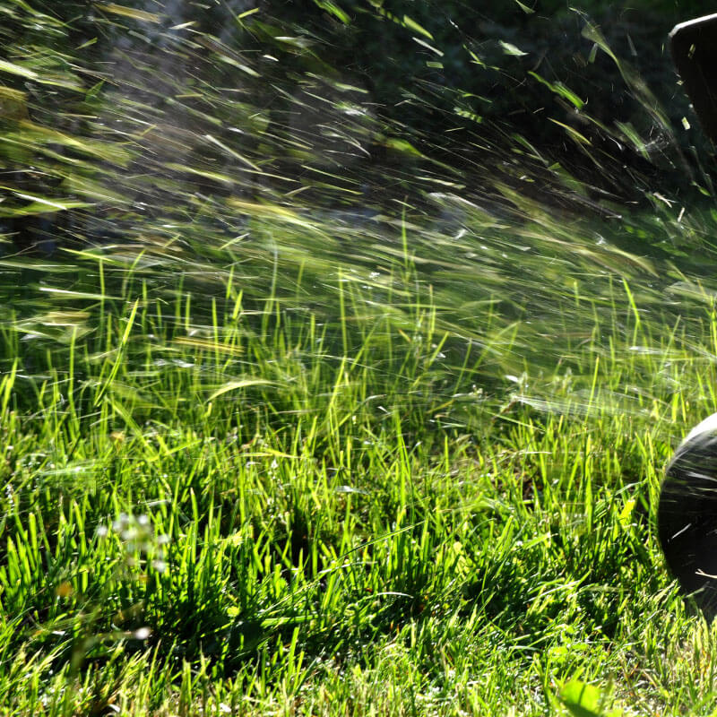Commercial lawn services lawn moving