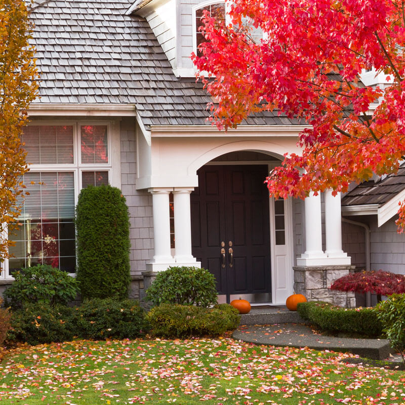 Fall Cleanup Services MI, Commercial, Residential, Yard ...