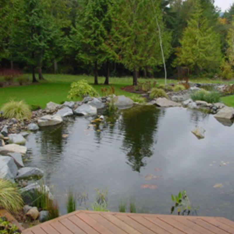Large residential pond construction mi 1